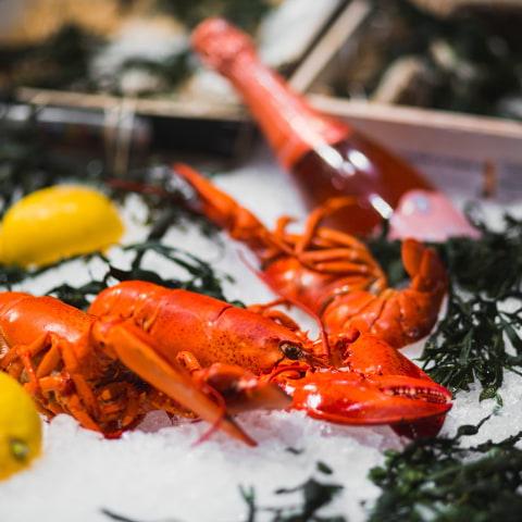 Guiden till Stockholms bästa skaldjursrestauranger