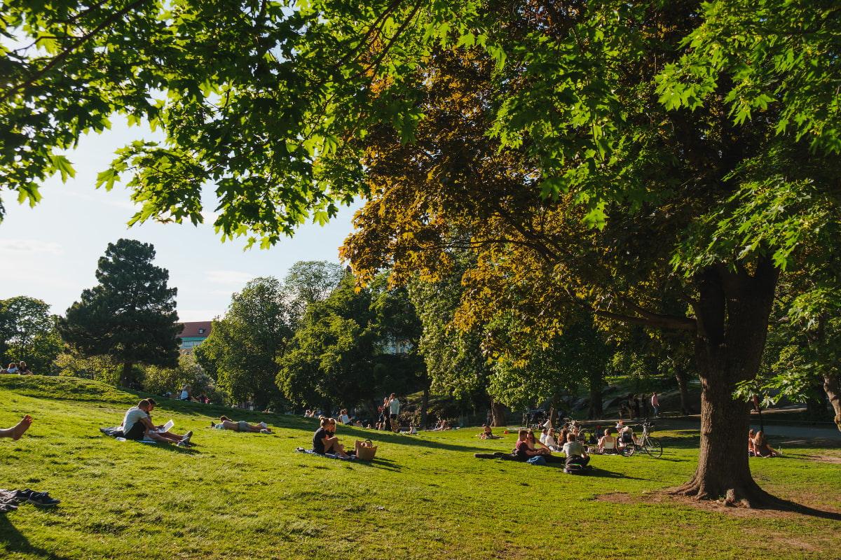 De bästa platserna för picknick i Stockholm