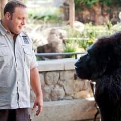 Sylvester Stallone spelar lejon i The Zookeeper