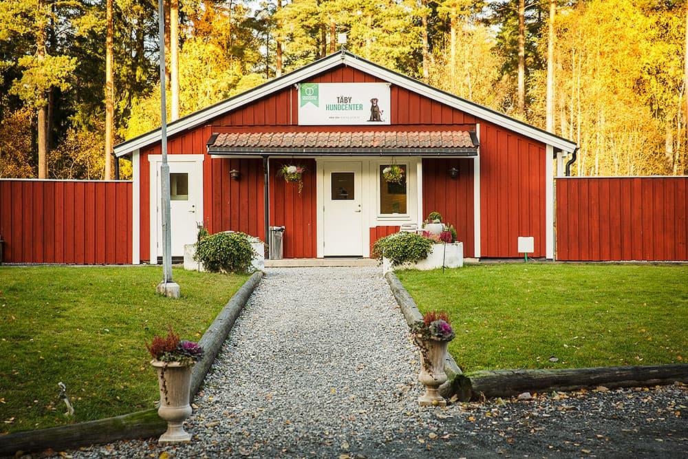 Hunddagis och hundhotell i Stockholm