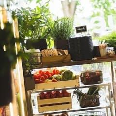 Guiden till Uppsalas bästa hälsorestauranger