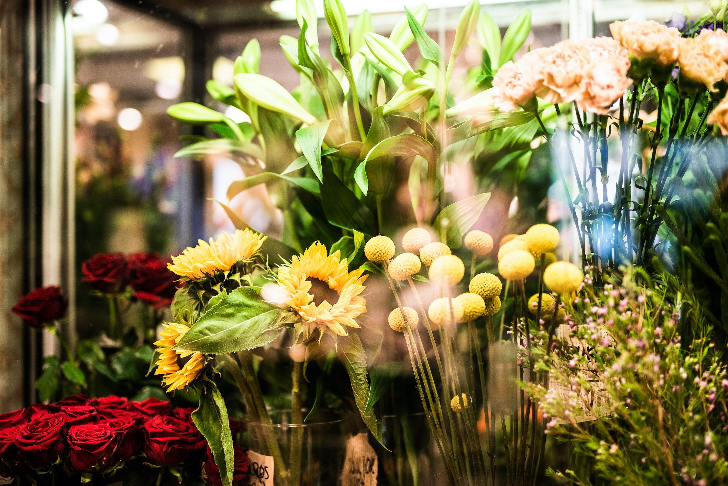 Blomster & Design