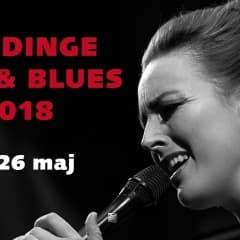 Gratisfestival för jazz- och bluesälskare