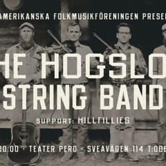 Hogslop Stringband live på Pero