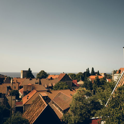 Summer on Gotland