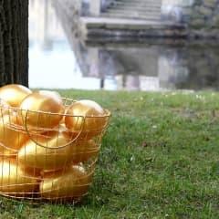 Clarion arrangerar lyxig äggjakt