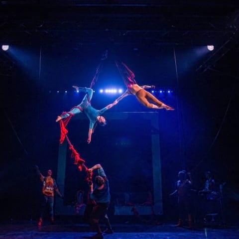 Cirkus Cirkör på Södra Teatern återvänder hösten 2019