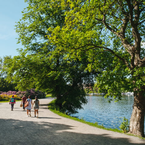 Guide to lovely walks in Stockholm