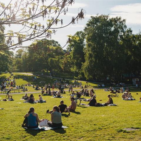 Här hittar du mysiga parker i Stockholm