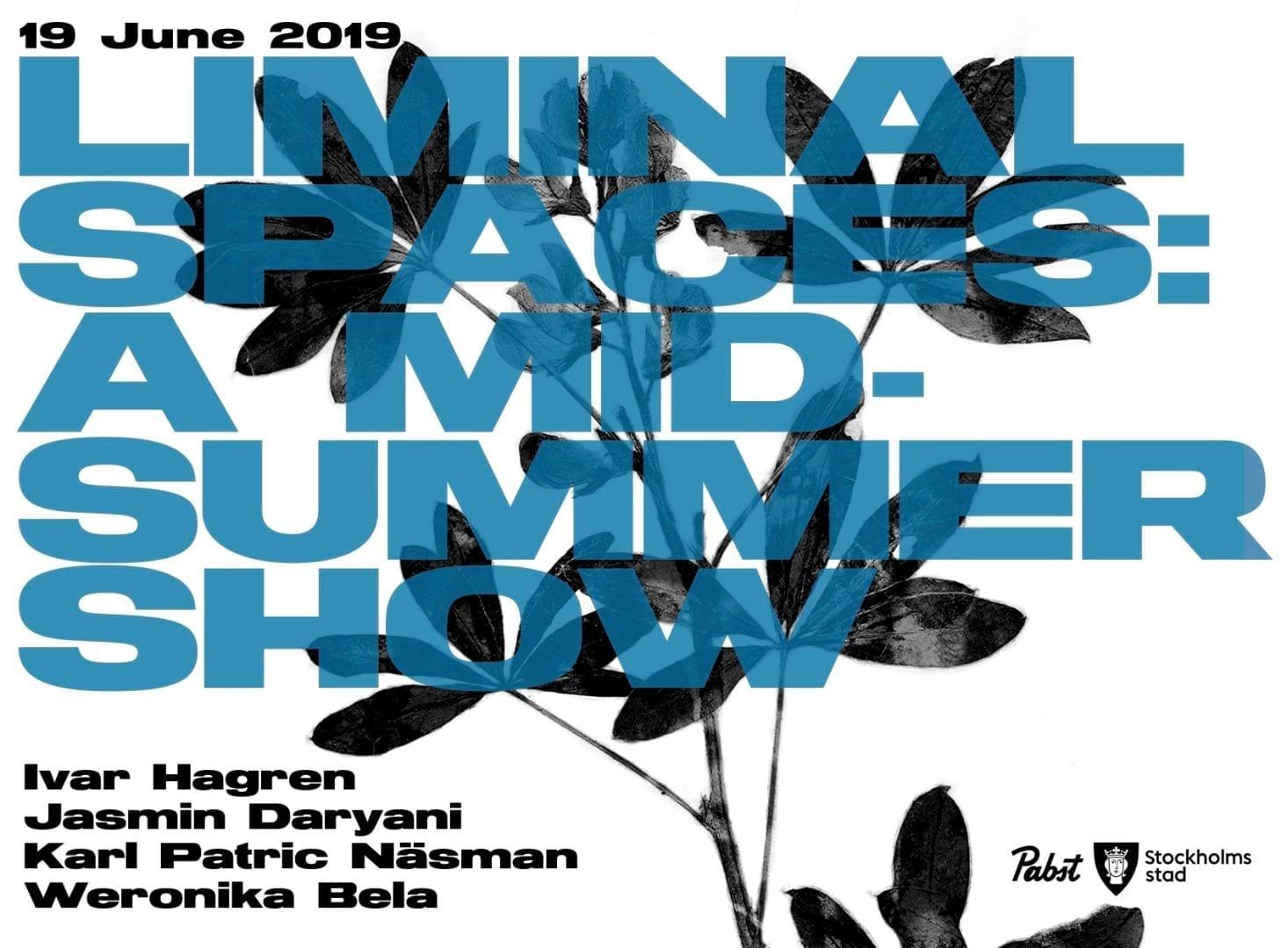 Liminal Spaces – a midsummer show