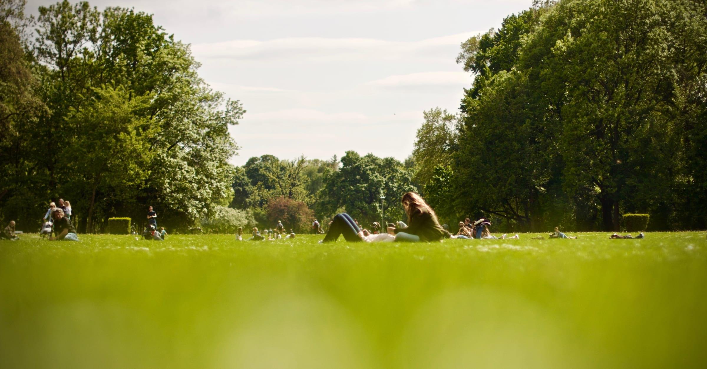 Guiden till Göteborgs bästa picknickplatser
