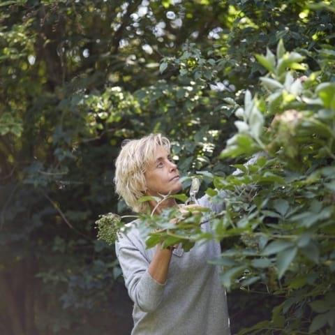 Vildvuxet och vårgrönt – ätbara vilda växter