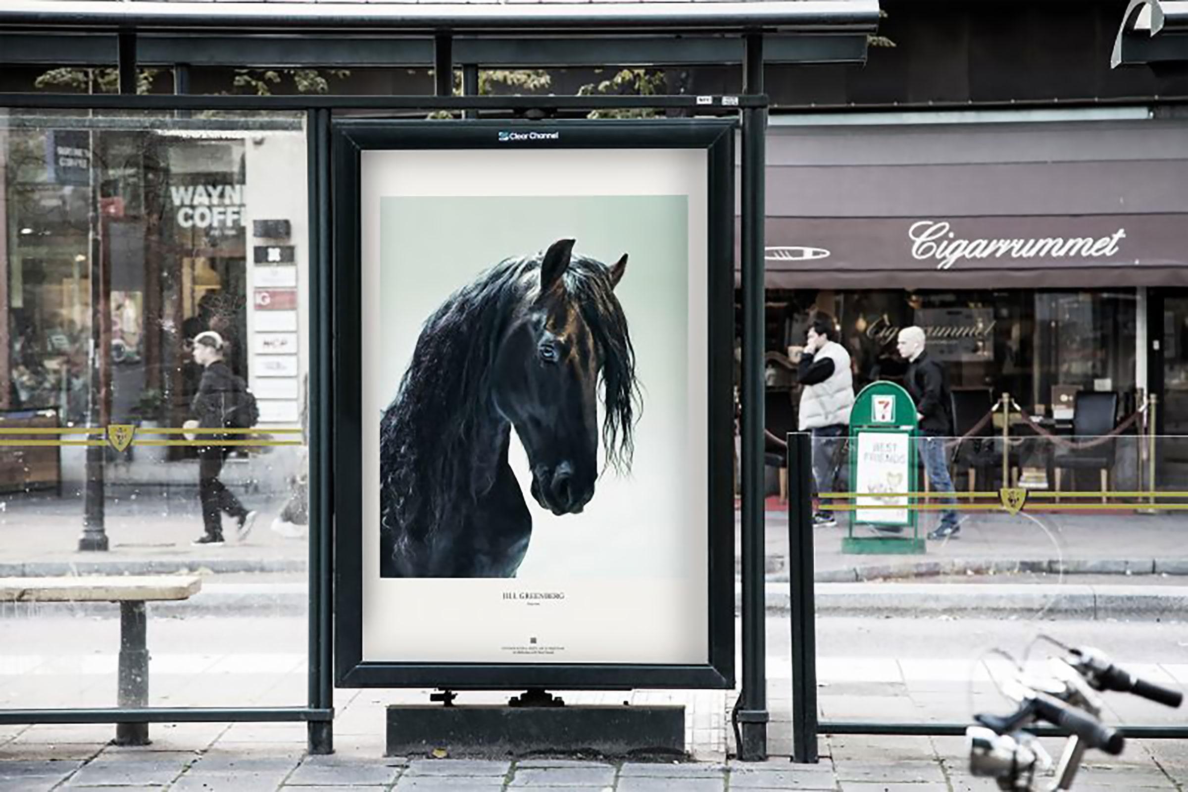 Fotografiska visar utställning med 50 verk – ute på stan