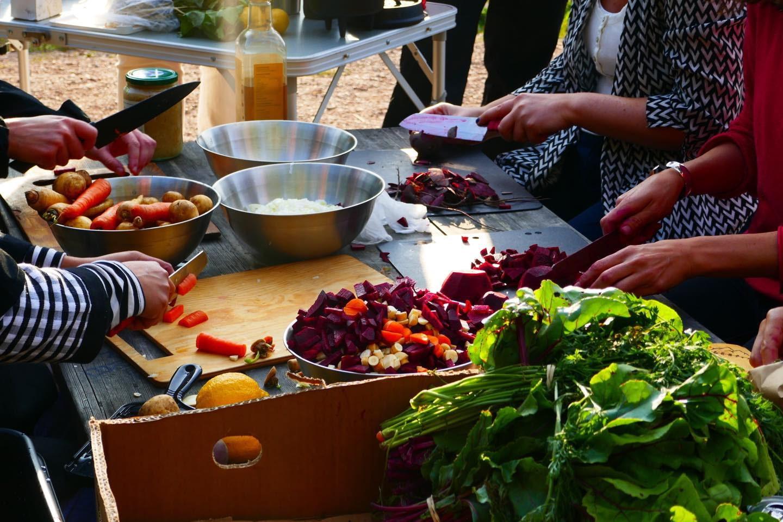 Lyxig Matlagnings- och Naturvinskurs i Djurgårdens skogar