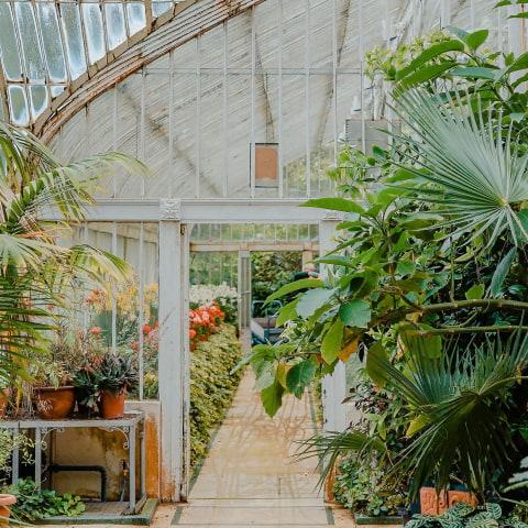 Guiden till handelsträdgårdar i Stockholm