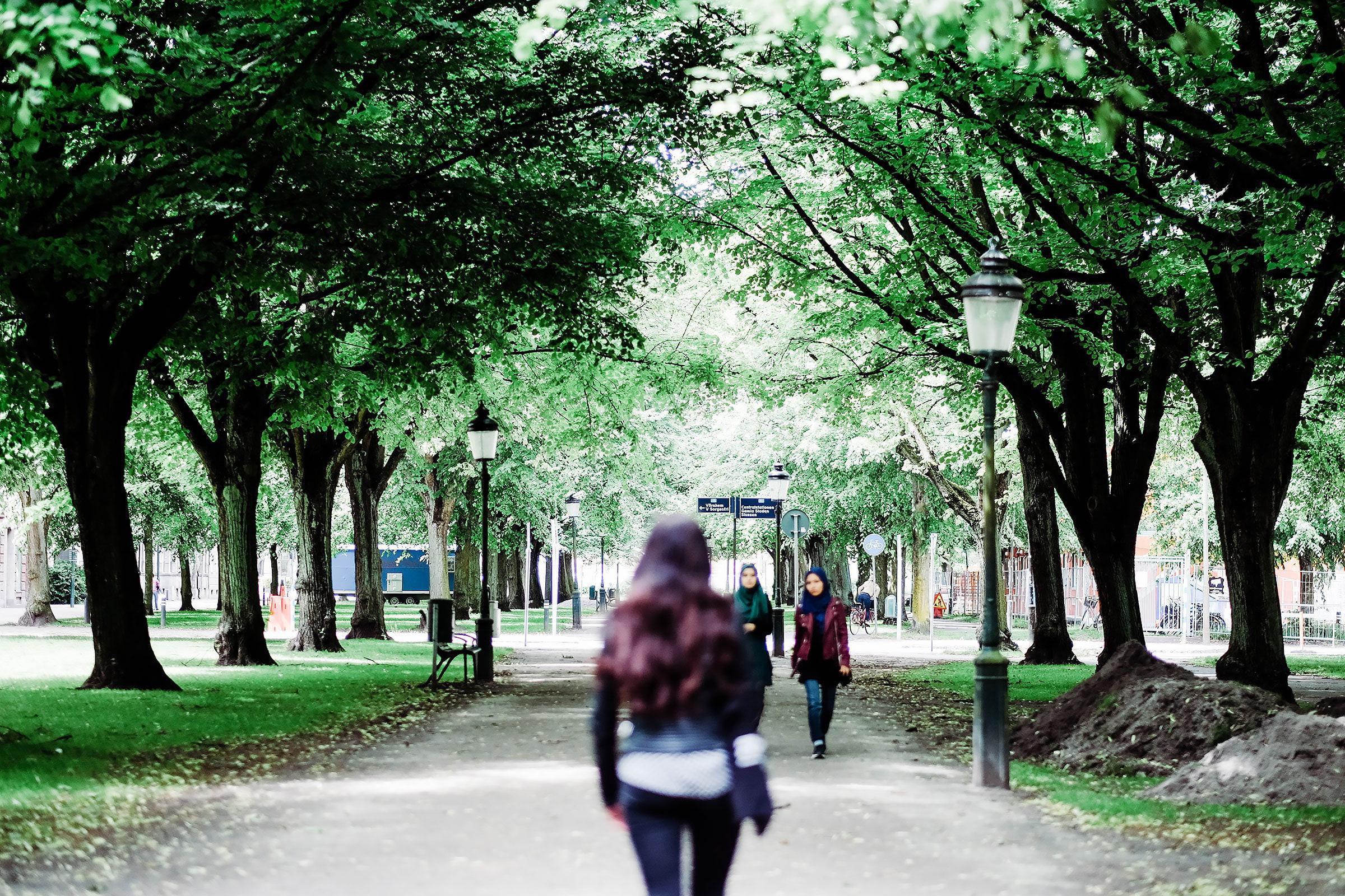 Guiden till trevliga promenadstråk i Malmö