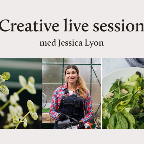 Skillbreak live session: Window farming – spira fröer