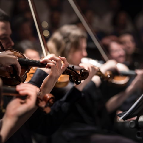 Nationaldagskonsert sänds live från Konserthuset