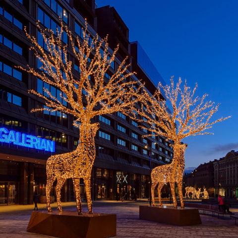 Ett ljus i mörkret: Då tänds Stockholms julbelysning