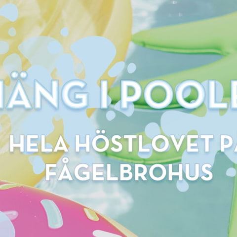 Häng i poolen på höstlovet på FågelbroHus