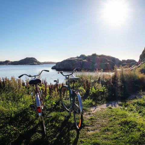 Guiden till utflykter utanför Göteborg