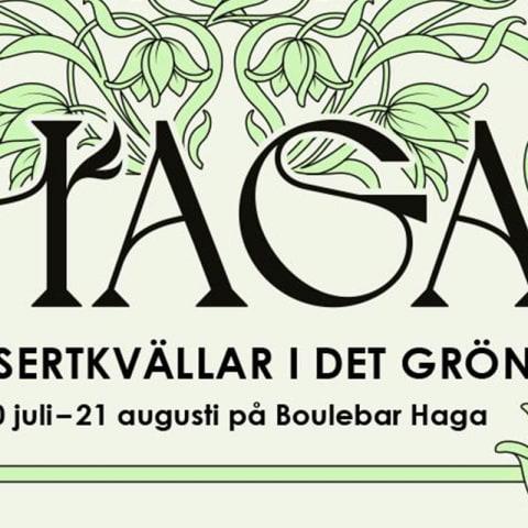 Artisterna som spelar på Haga – konsertkvällar i det gröna