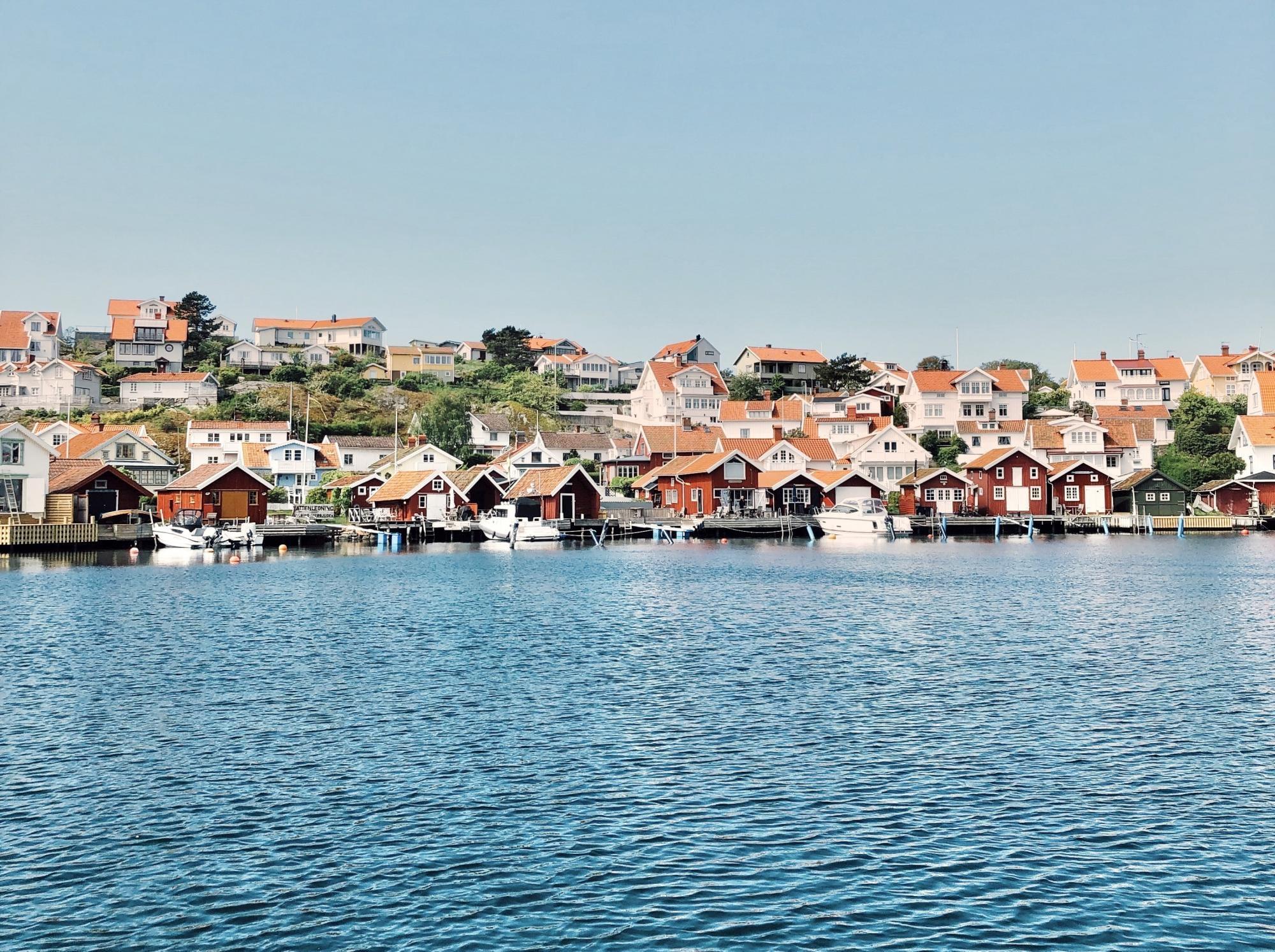 Scandinavian Detours | Skaldjurssafari på västkusten