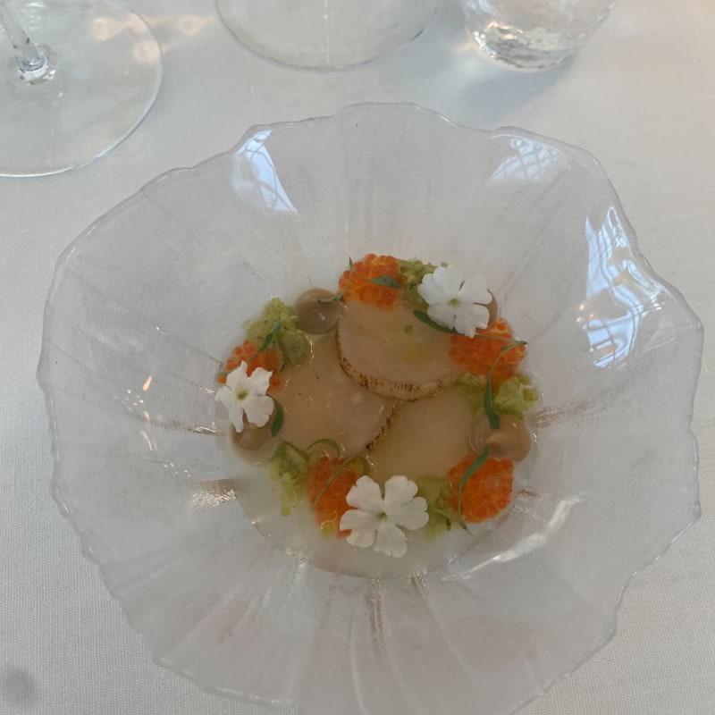 Pilgrimsmussla, kålrabbi ,fermenterad krusbär – Bild från Aira av Lottie L.