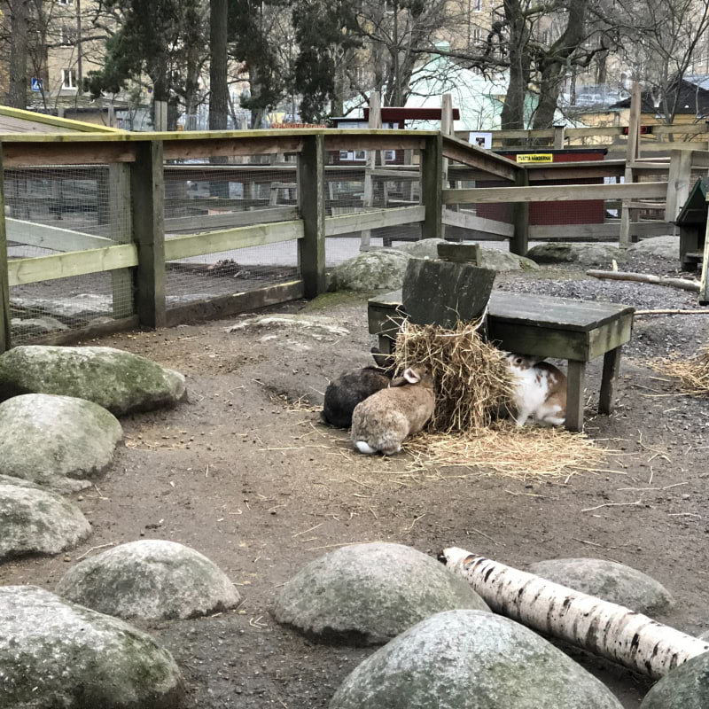 Photo from Aspuddsparken by Ida B.