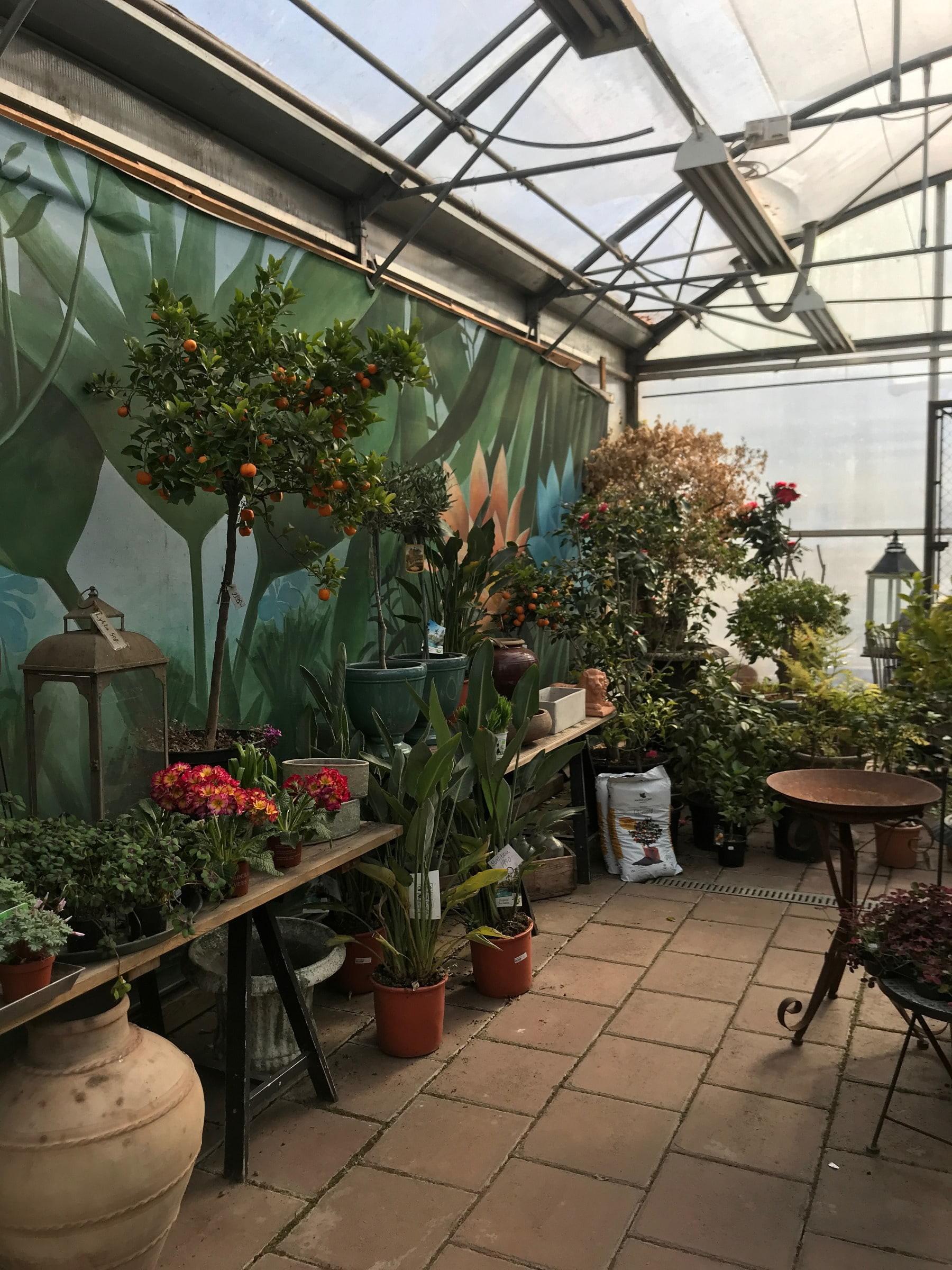 Inne i butiken – Bild från Brunnsvikens Trädgård & Café av Jessica K.