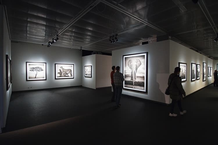 Image result for fotografiska