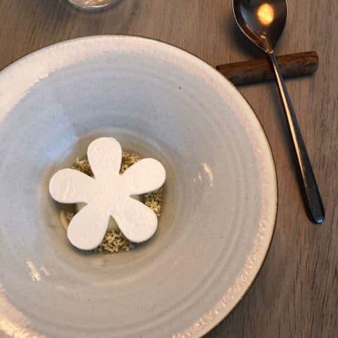 Fläder med fryst yoghurt, gurka och maräng – Bild från Gastrologik av Adam L.