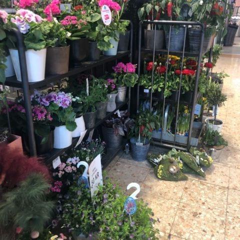 Bild från Mörby Blomsterhandel av Michaela J.
