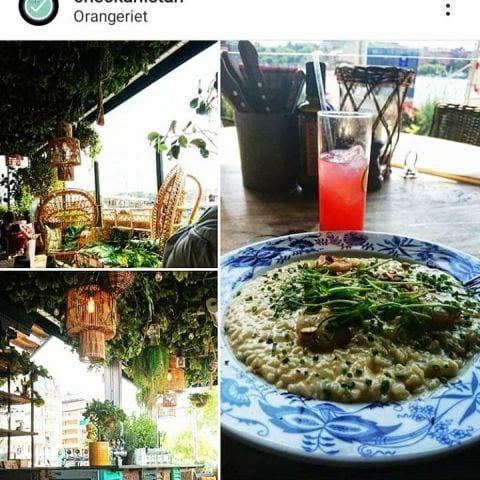 Photo from Orangeriet by Catrin M.