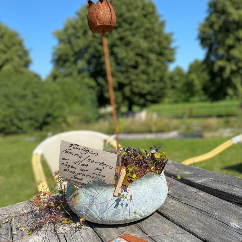 Bild från The Nut House av Madiha S.