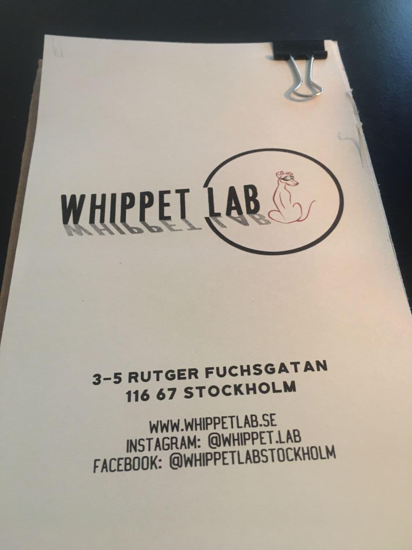 Bild från Whippet Lab av Fredrik J.